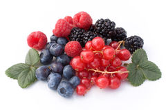 Red Soft Fruits Stock Photography