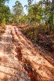 Red soil road damaged. Royalty Free Stock Image