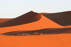 Red Sossusvlei dunes. Red dunes against blue clear sky. Sossusvlei. Namib desert. Namibia Stock Photos