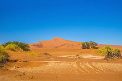 Red Sossusvlei dunes under blue sky at sunny day. Red Sossusvlei dunes, famous travel destination in Namibia, under blue sky at sunny day stock photos