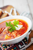 Red soup borsch with meat. Ukrainian national red soup borsch with meat Stock Images