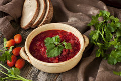 Red soup borscht Stock Images