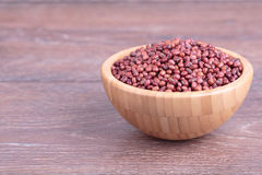 Red soybeans Stock Images