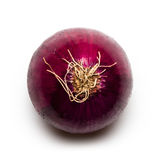 Red Spanish Onion. On White Royalty Free Stock Photo