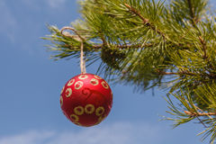 Red sphere hanging on a Christmas tree against the blue sky Stock Photos