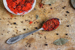 Red spice mixture Royalty Free Stock Photo