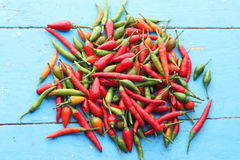 Red spicy chilly peppers. On blue wood background Royalty Free Stock Photo