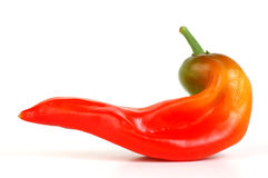Red Spicy Hot Pepper Stock Images