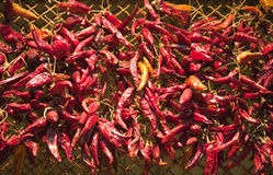 Red spicy hungarian peppers on farmers market Stock Photo