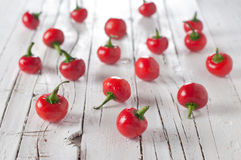 Red spicy pepper Stock Photography