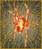 Red spider. Stained glass window depicting a spider on the web Stock Image