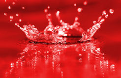 Red splash. Fresh red water splash. Background royalty free stock images