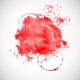 Red splash on white background. Royalty Free Stock Images