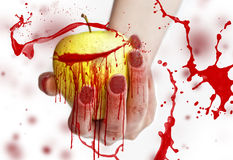 Red splashes on yellow apple in a female hand with long red nails isolated on white background Royalty Free Stock Image