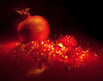 Red Splendor. Still life with scattered pomegranate seeds Stock Photography