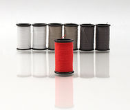 Red Spool of Thread. Standing alone in front of gray and white threads Royalty Free Stock Image