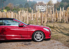 Red sports car parked next to the forest of banana. In mianyang, sichuan Stock Images