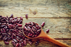 Red spotted beans Royalty Free Stock Photos
