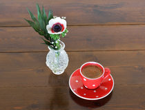 Red spotty mug and anemone Stock Images