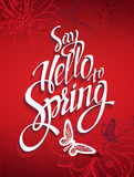 Red spring background with signs and hummingbirds and butterflies. Stock Photography