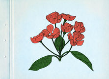 Red spring flowers. Drawing on blue cardboard. Vintage picture. Stock Photo
