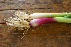 Red spring onion. On rustic wooden table Royalty Free Stock Image