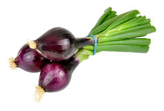 Red Spring Onions Royalty Free Stock Images