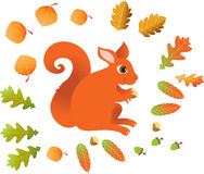 Red squirrel with leaves. A vector illustration of a autumn scene with a red squirrel with some acorns and hazel nuts, also a lot of leaves are swirling around Royalty Free Stock Image