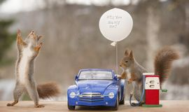 Red squirrels with an car with balloon  and gas station Royalty Free Stock Photo