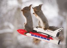 Red squirrels on a rocket with Space Shuttle. Red squirrels on an rocket with Space Shuttle Stock Image