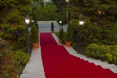 Red stairs. Red carpet on marble stairway welcoming VIPs Stock Photo