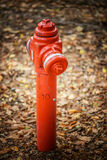 Red standpipe Royalty Free Stock Photo