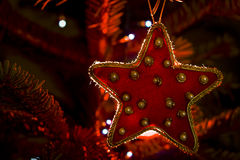 Red star. On christmas tree Royalty Free Stock Images