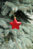 Red star. Christmas decoration on the tree Royalty Free Stock Photo