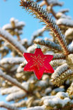 Red star Christmas decoration Royalty Free Stock Photo