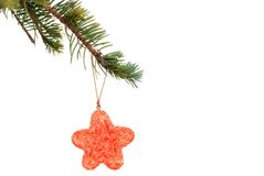 Red star cookie hanging on christmas tree branch Stock Images