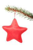 Red star hanging on a tree. Royalty Free Stock Photo