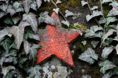 Red star and ivy. On the an old Soviet Memorial Royalty Free Stock Image