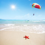 Red starfish on beach and parachute in sky Stock Image