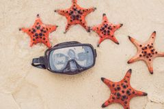 Red starfish and diving mask on the beach stock image