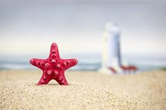 A red starfish and lighthouse at the beach. A red starfish in the foreground on a sandy beach with a lighthouse and ocean waves crashing in the background Stock Photos
