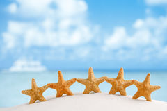 Red starfish with ocean, beach, sky and seascape Stock Image