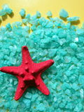 Red starfish on salt. Red starfish on green salt royalty free stock photo