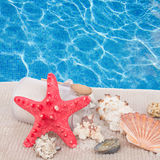 Red starfish with sea spa  setting Stock Photo