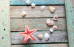Red starfish and seashells on a wooden background Stock Photography