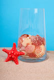 Red starfish and shells in glass Stock Photography