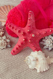 Red starfish with towels Stock Images