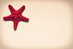 Red starfish vintage Stock Photos