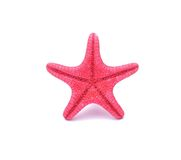Red Starfish on white background Stock Photo