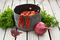 Red steamed crayfish on the wooden background. Boiled crawfish. Woden background. Rustic style. Royalty Free Stock Photo